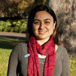 Maral Hosseinpour, Organiser, VAHPA